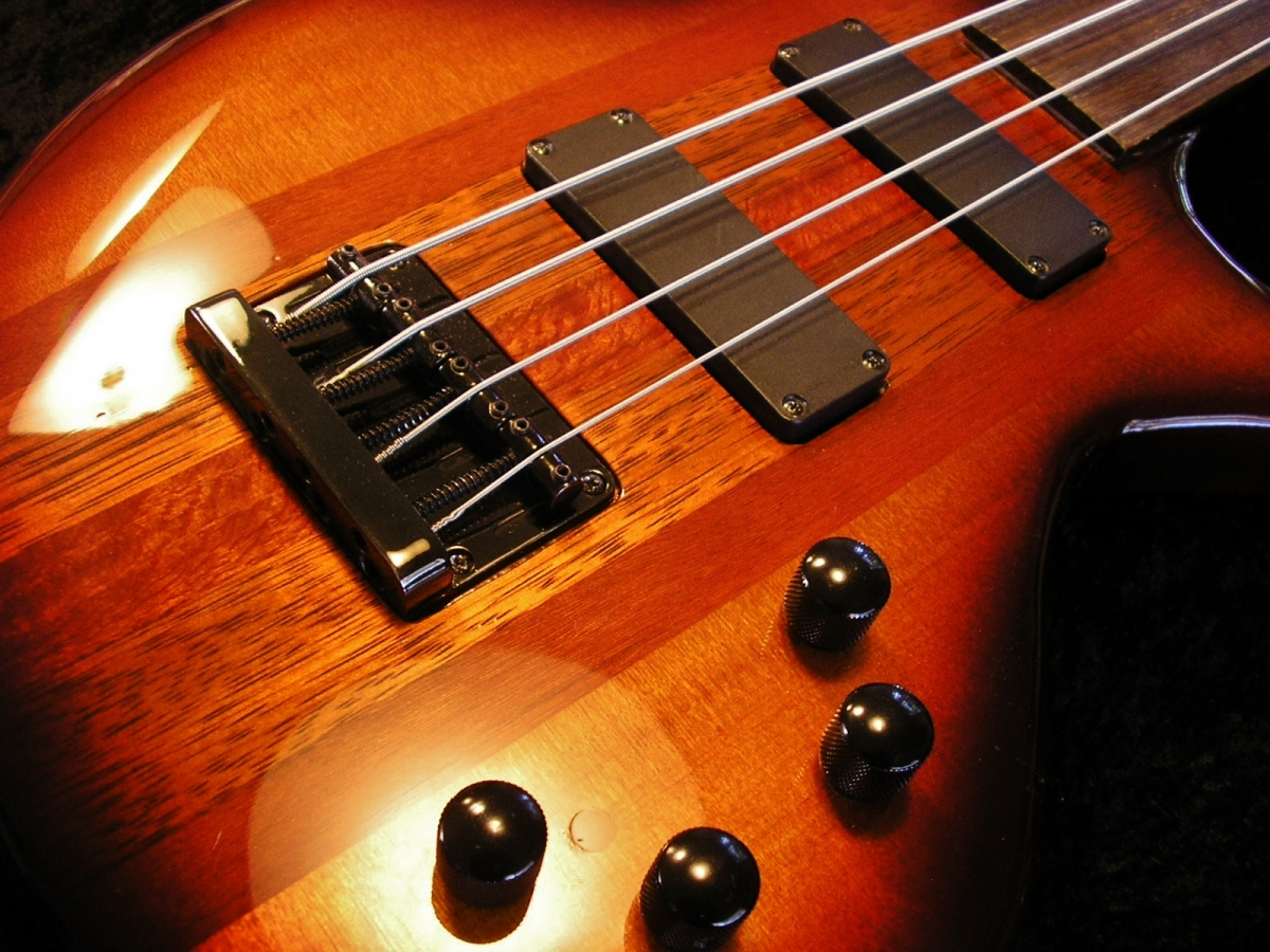 Rees Custom Fretless Bass