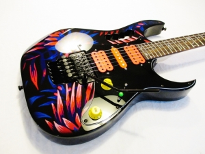 Ibanez Custom Jem Floral Australian Made Schaller Bridge Evolution Pickups Custom Paint