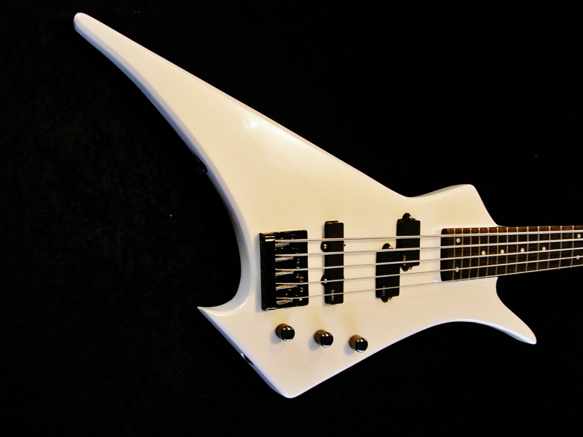 Rees Custom Ghost Build Hamer Scarab 5 String Bass