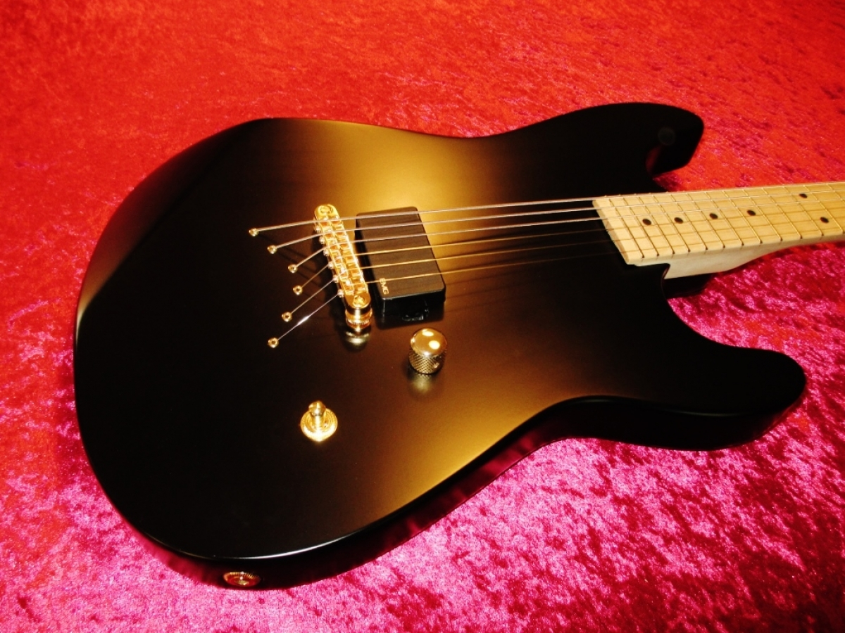 Rees Custom Stealth Matt (old Headstock)