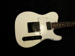 Custom Built Tele