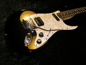 Tremolo Conversion Custom Pickguard