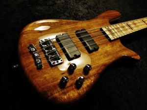 Raw Warwick Bass Made full Gloss Plus Repairs