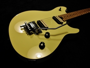 EVH Wolfgang Special Repair And Paint Back And Sides Fret Dress And Setup